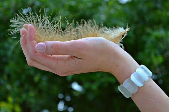 Нокти с пера