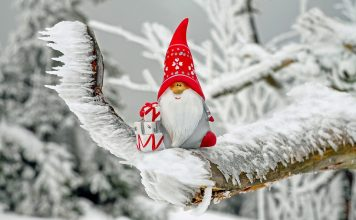 Коледа за зодиите