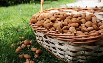 5 невероятни ползи от бадемите